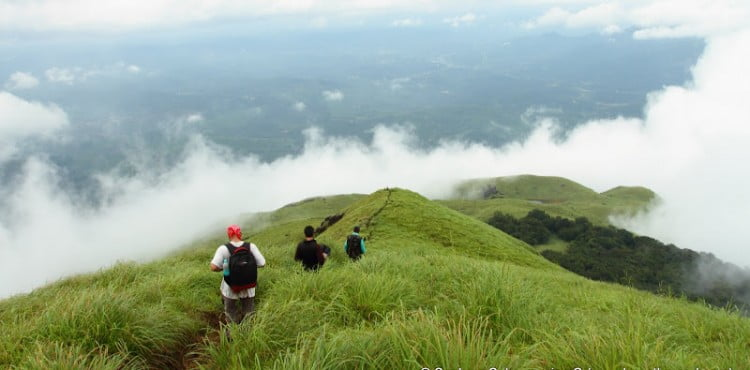 Wayanad Tourist Attractions, Tourist Places in Wayanad, Popular Places in Wayanad